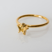 The World on The Moon ring gold plated